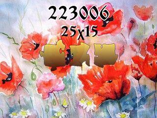 Puzzle №223006