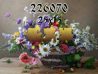 Puzzle №226070