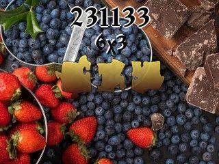 Puzzle №231133