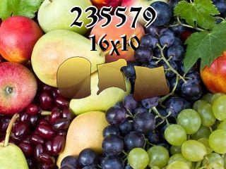 Puzzle №235579