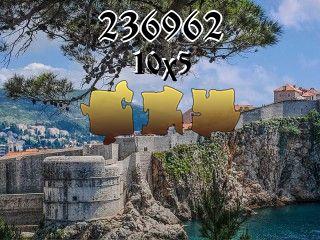 Puzzle №236962