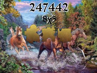Puzzle №247442
