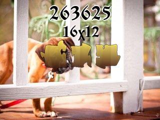 Puzzle №263625