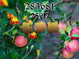 Puzzle №283681