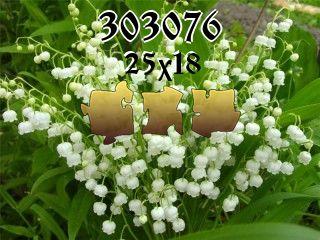 Puzzle №303076