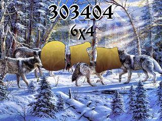 Puzzle №303404