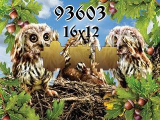Puzzle №93603
