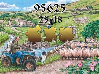 Puzzle №95625