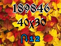 Puzzle changeling №189846