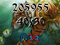 Puzzle changeling №205955