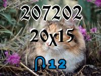 Puzzle changeling №207202