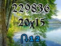 Puzzle changeling №229836