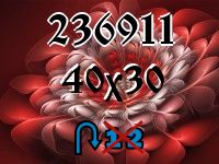Puzzle changeling №236911