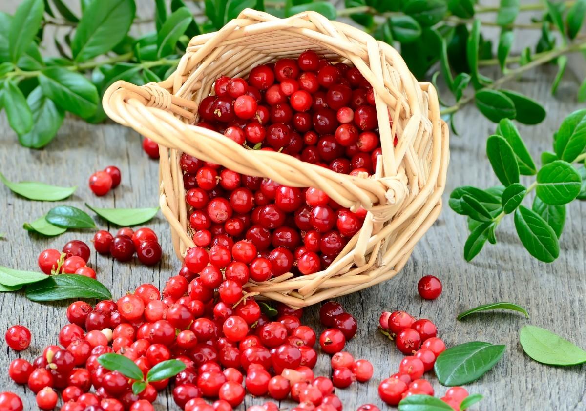 Puzzle Recueillir des puzzles en ligne - Cranberries