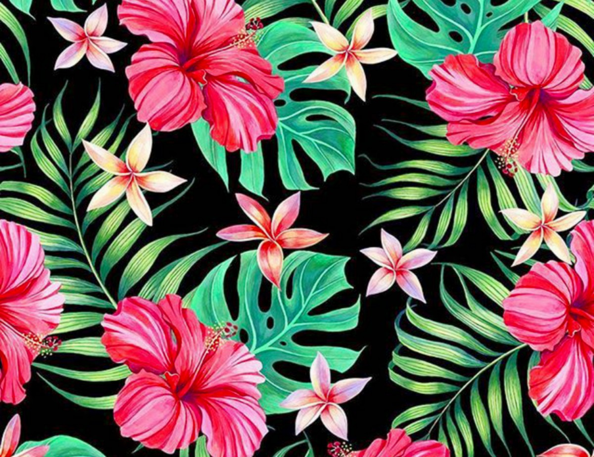 Puzzle Recueillir des puzzles en ligne - Hibiscus and plumeria