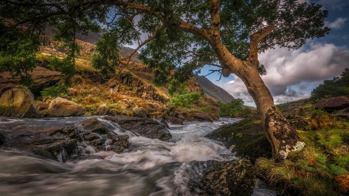 Puzzle Recueillir des puzzles en ligne - Mountain river