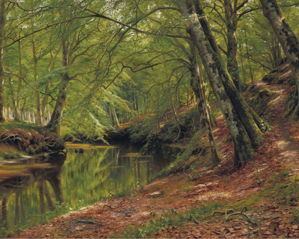 Puzzle Recueillir des puzzles en ligne - River in the forest