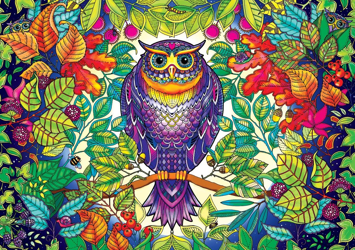 Puzzle Recueillir des puzzles en ligne - Owl