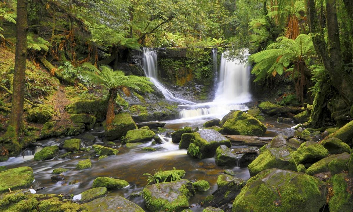 Puzzle Recueillir des puzzles en ligne - Tasmanian waterfall