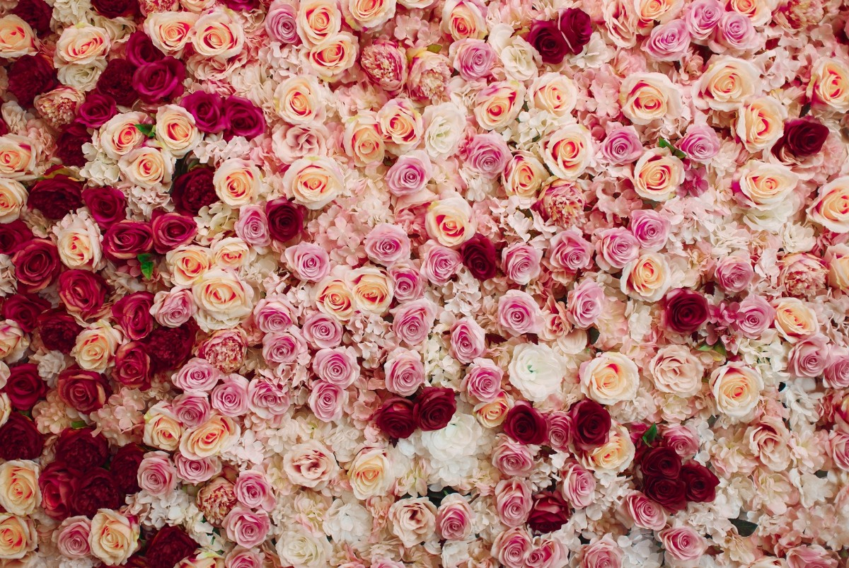 Puzzle Recueillir des puzzles en ligne - Flower carpet