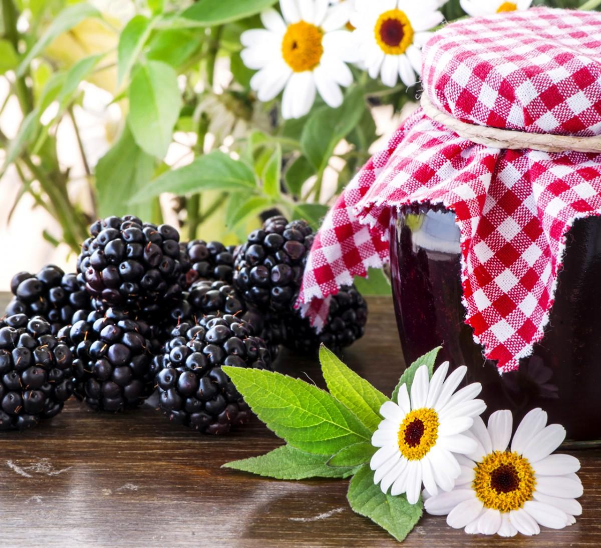Puzzle Recueillir des puzzles en ligne - Jam of blackberries