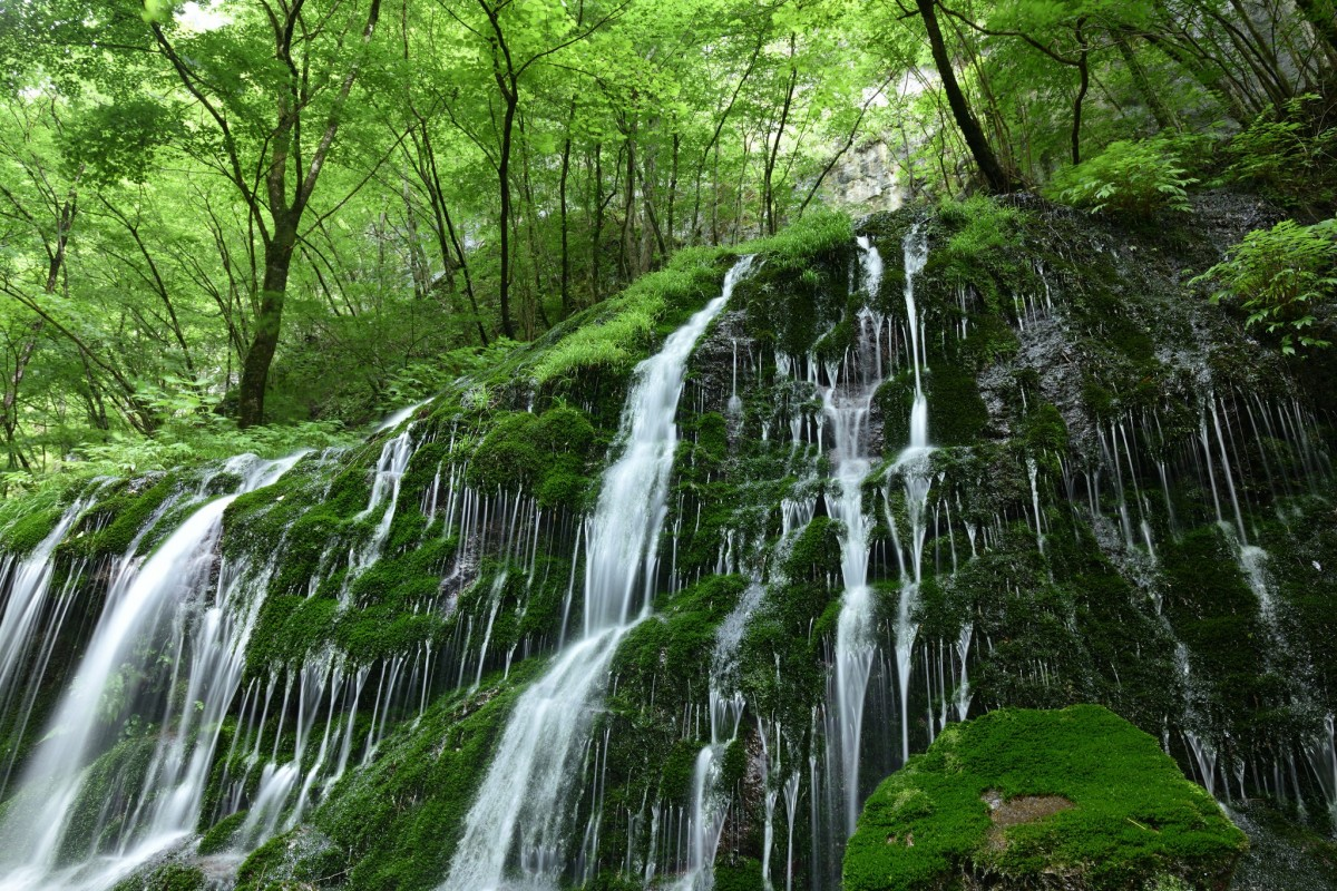 Puzzle Recueillir des puzzles en ligne - Waterfall