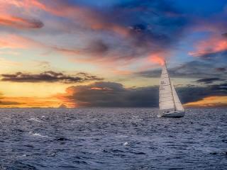 Собирать пазл Running on waves онлайн