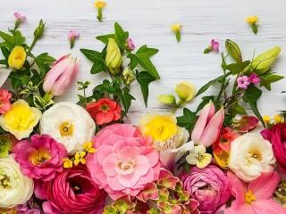 Собирать пазл A border of flowers онлайн
