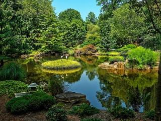 Собирать пазл Botanical garden онлайн
