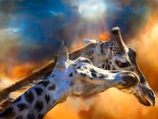 Собирать пазл Two giraffes онлайн