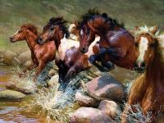 Собирать пазл Horses онлайн