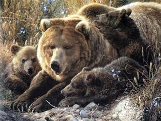 Собирать пазл Bears онлайн