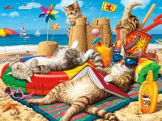 Собирать пазл On the beach онлайн