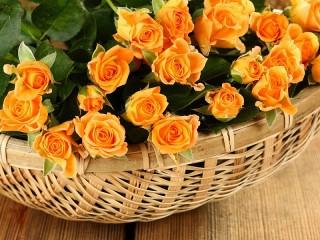 Собирать пазл Orange roses онлайн