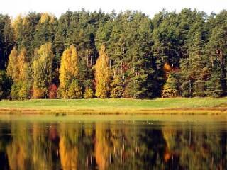 Собирать пазл Autumn онлайн