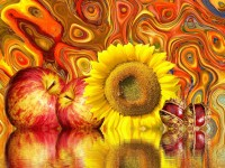 Собирать пазл Reflecting collage онлайн