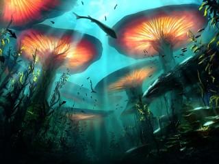 Собирать пазл Underwater mushrooms онлайн
