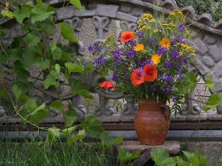 Собирать пазл Wildflowers онлайн