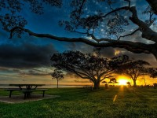 Собирать пазл The Last Rays of Sunlight онлайн