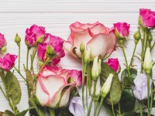 Собирать пазл Pink on white онлайн