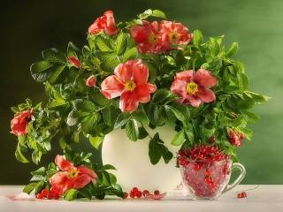 Собирать пазл Wild rose онлайн