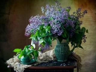 Собирать пазл Lilac онлайн