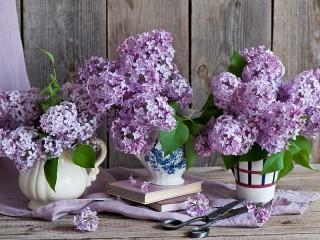 Собирать пазл Lilac still life онлайн