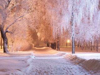 Собирать пазл Snowy alley онлайн