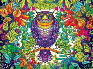 Собирать пазл Owl онлайн