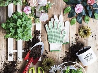 Собирать пазл Table gardener онлайн
