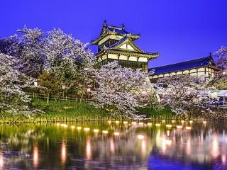 Собирать пазл Tsvetushchaya sakura онлайн