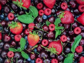 Собирать пазл Berries and mint онлайн