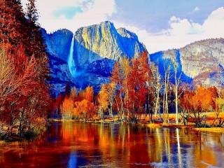Собирать пазл Bright autumn онлайн
