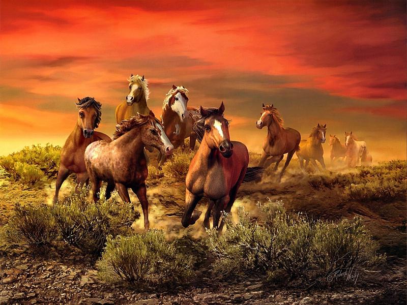 Puzzle Recueillir des puzzles en ligne - Sunset and horses